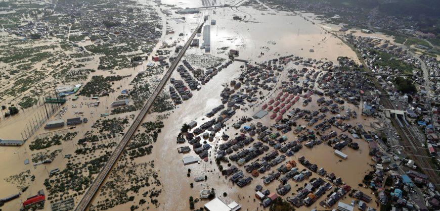 Тайфун «Хагибис» нанёс ущерб сельскому хозяйству Японии на $354 млн