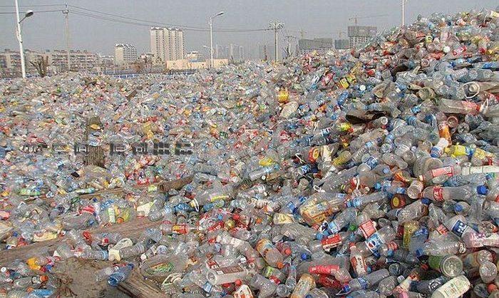 Минприроды предложило запретить в России ватные палочки и бутылки из цветного пластика
