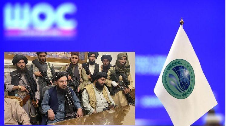 Путин призвал возобновить работу контактной группы ШОС-Афганистан