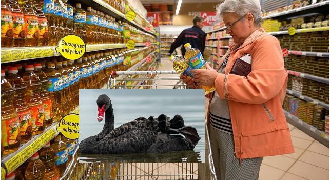 В МЭР допускают появление «черных лебедей» на потребительском рынке России