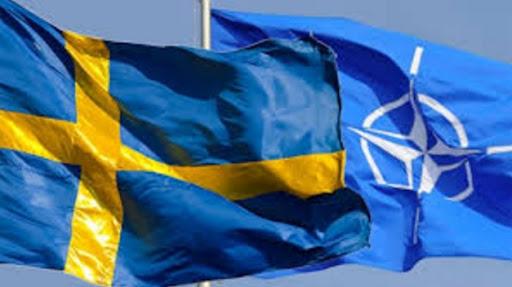 В парламенте Швеции задумались о вступлении в НАТО. В числе причин — «провокационные действия России»
