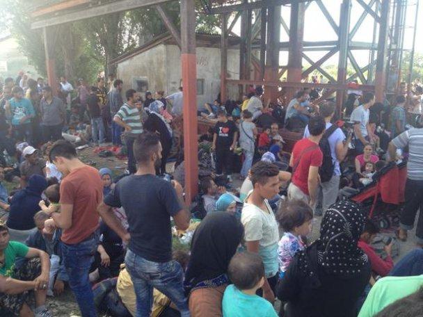 Хорватия отказалась принимать беженцев