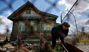 Чиновники предложили лишать госсубсидий семьи, имеющие огороды