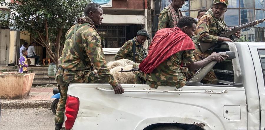 Львы Эфиопии, тигры Тыграя